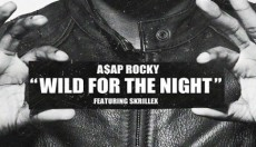 VIDEO PREMIERE - WILD FOR THE NIGHT